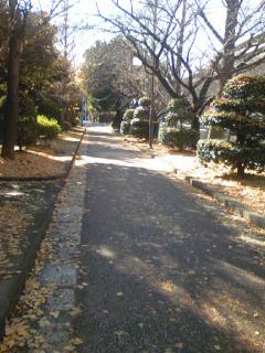 Kurokawa_005