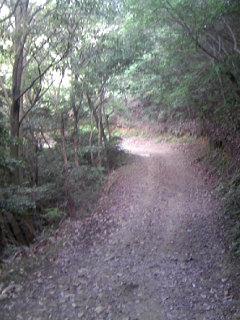 Trail_003