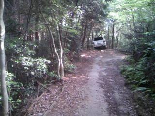 Trail_006