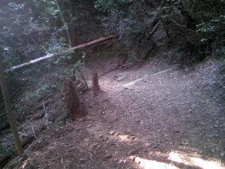 Trail_007