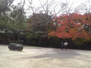 Ueno_city_003